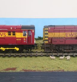 Weathering Services for O Gauge